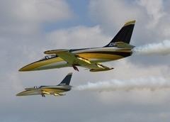 CARF Skygate L-39 Albatros (Yellow Silver Black)